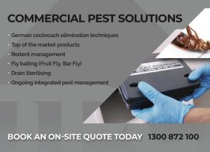 Pest Control Brisbane Commercial